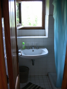 Small Bathroom with shower, and another great view